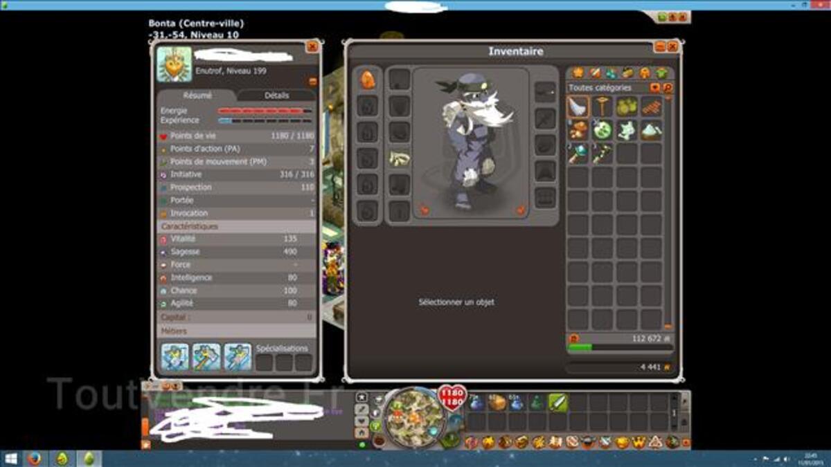 Team level 200 Dofus à vendre 100088543
