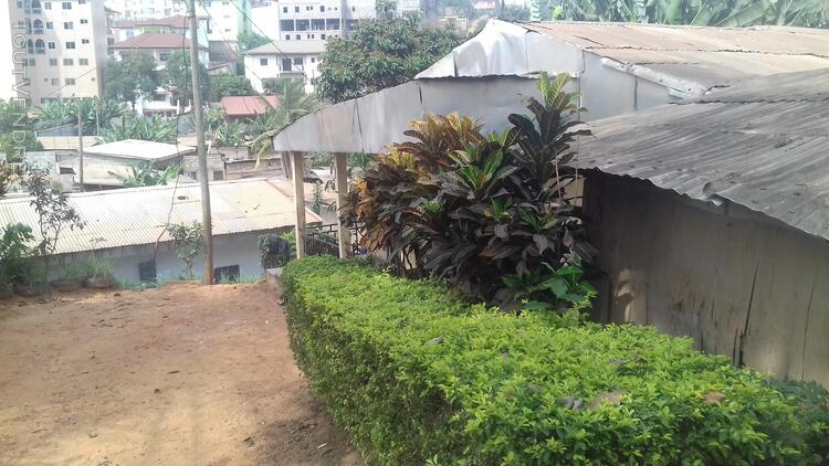 Terrain et maison à vendre 509160071