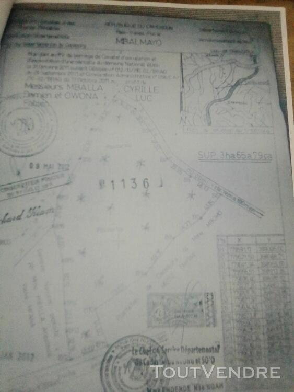 Terrain titré de 3ha 520797333