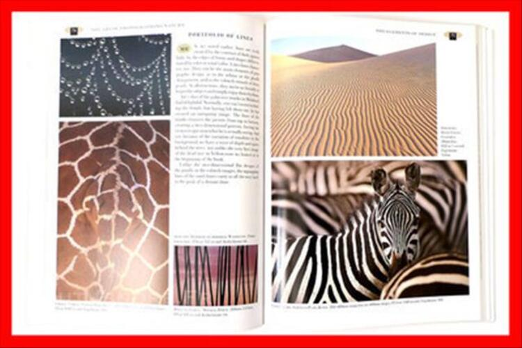 The art of photographing art wolfe 82562941