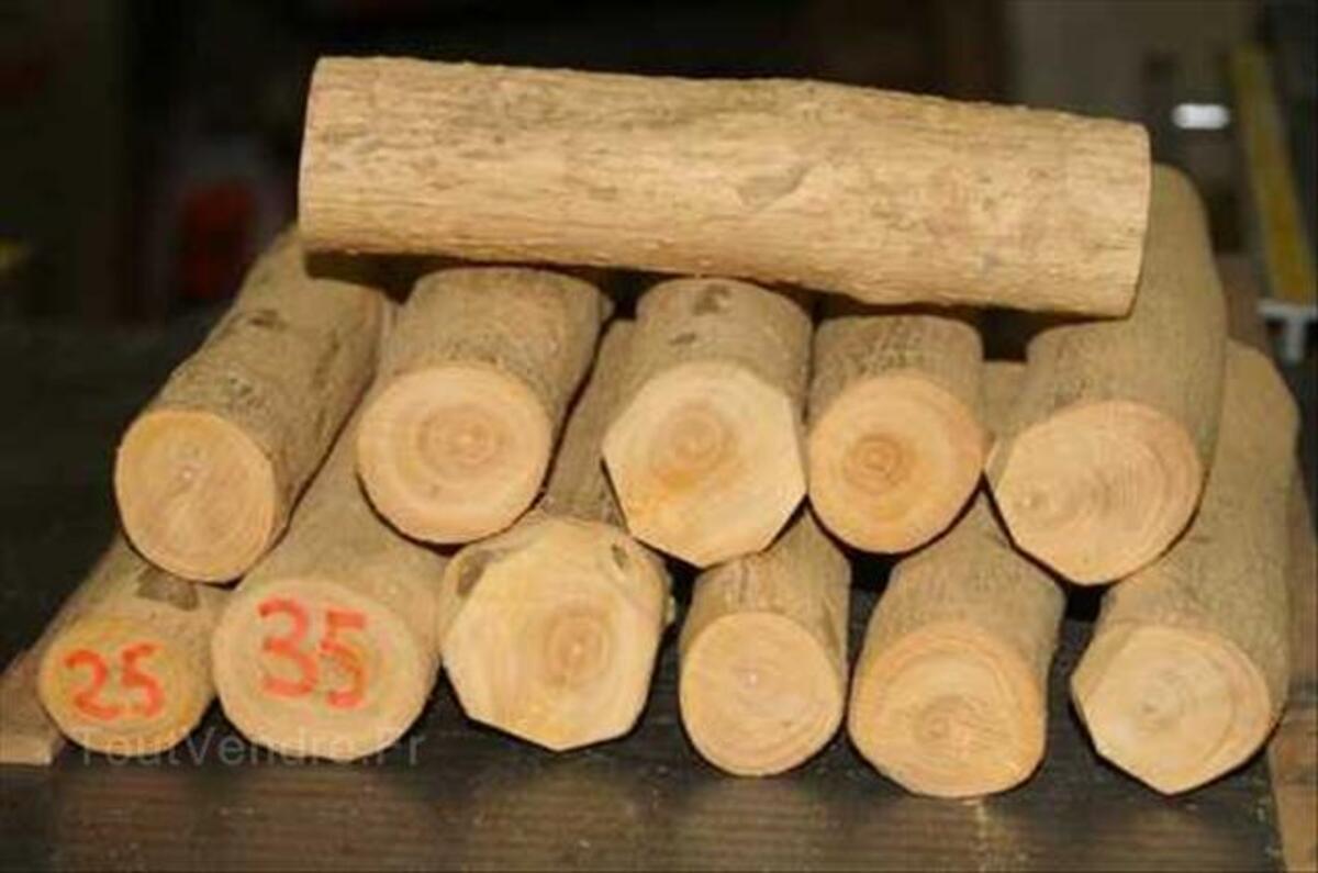 Tournage, 12 petits rondins de buis 56363159