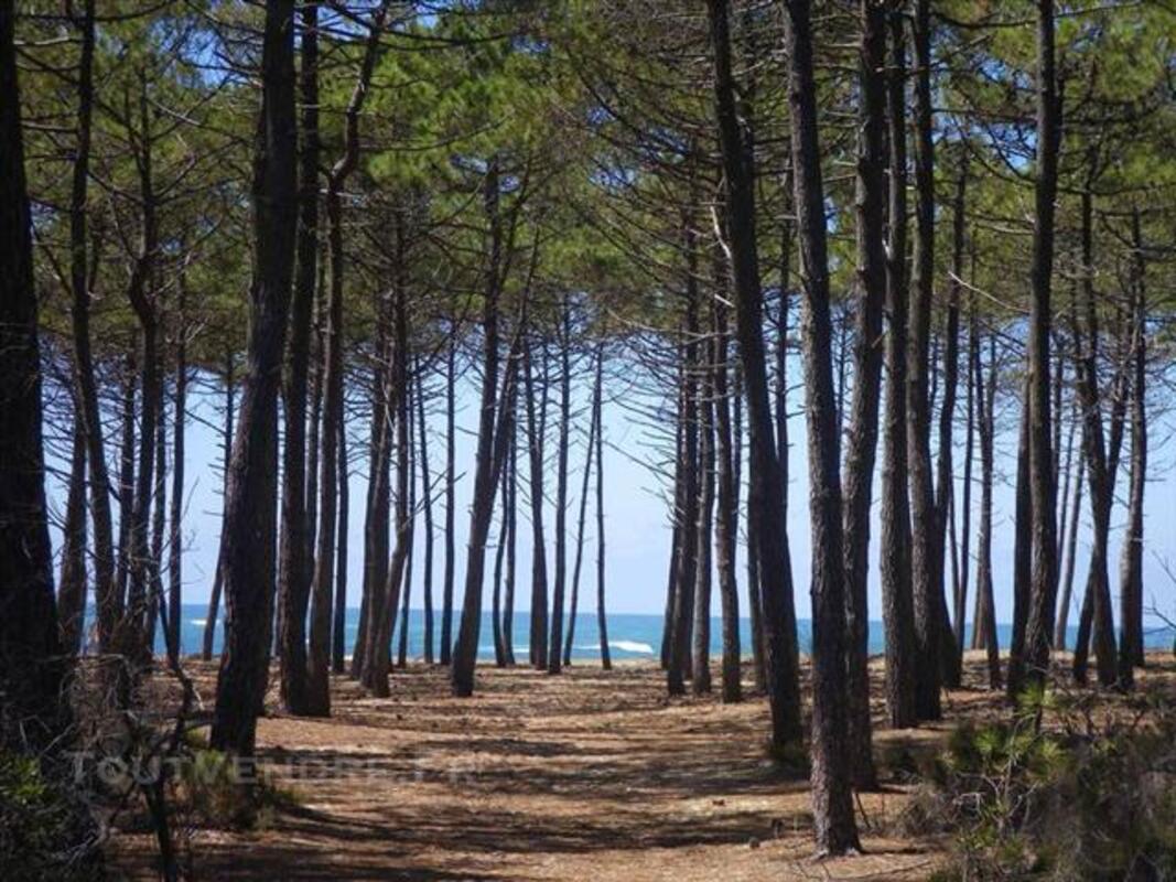 Vacances low cost : Océan, camping 3 étoiles 73467236