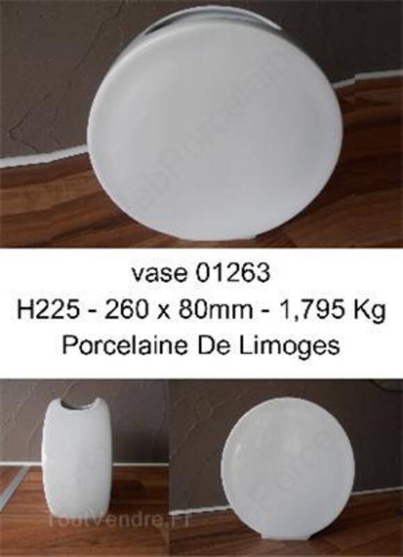 Vase 01263 porcelaine de limoges 36883428