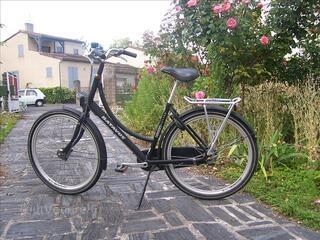 Vélo hollandais batavus homme