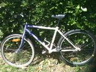 Vend lot de vélos