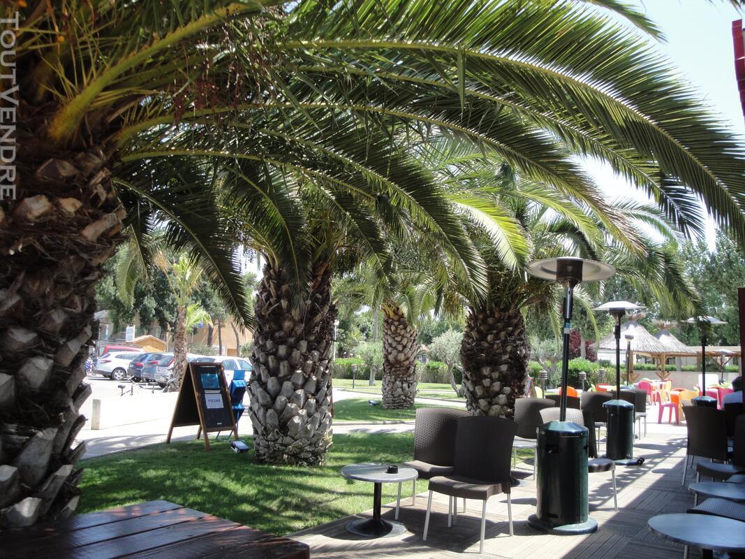 Vends mobihome dans camping à VIAS plage 34450 712649019