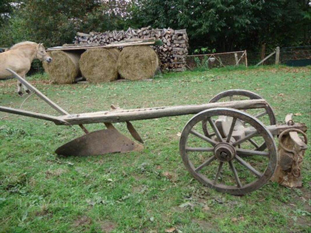 Charrue ancienne en bois 46717234