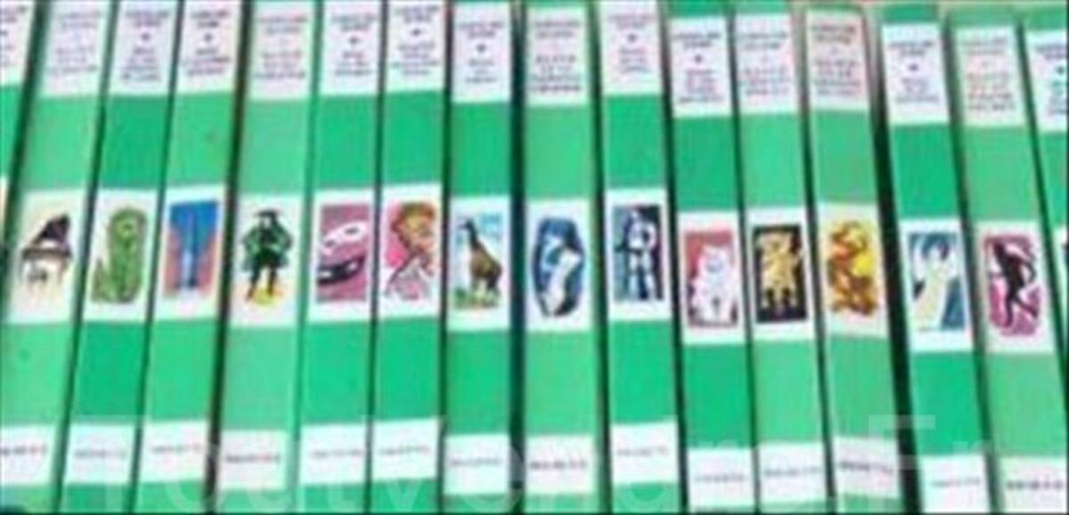 Livre Bibliotheque Verte Sebastien Croc Blanc Parne Sur