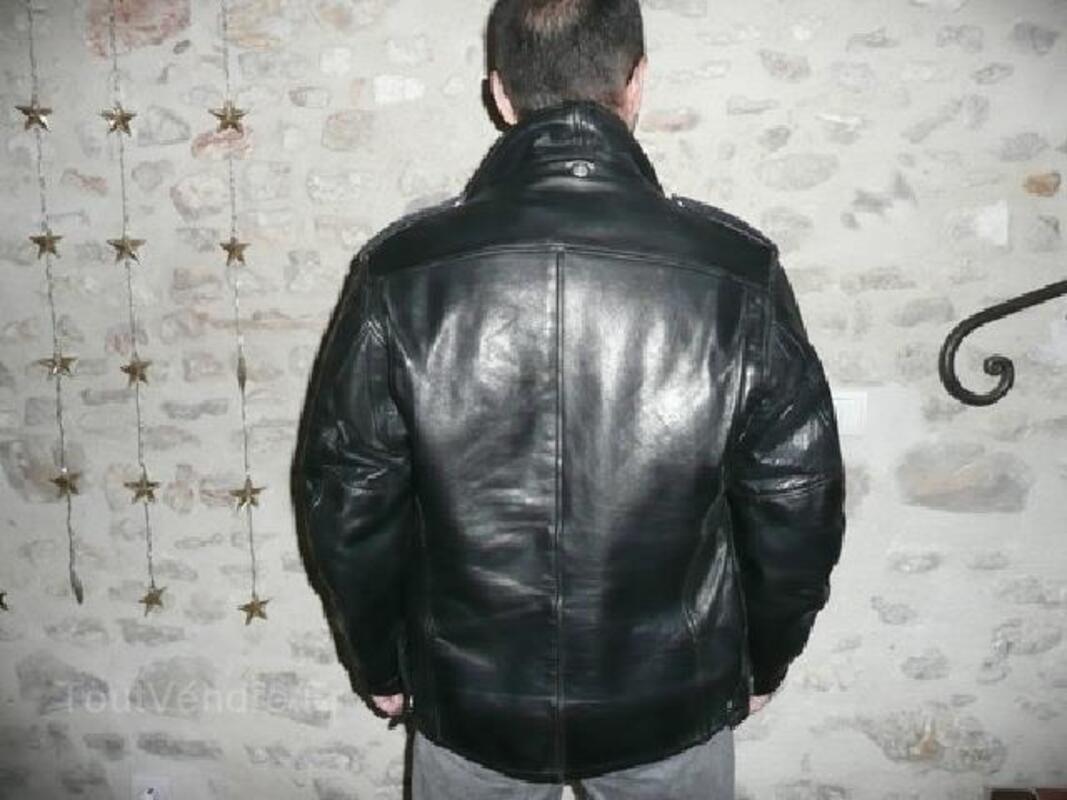 91 CAVALCADE Reithalfter Taille Warmblut noir cuir suédois